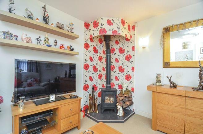 Living Room Stove
