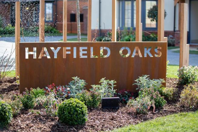 Hayfield Oaks
