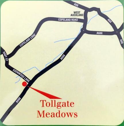 Tollgate Meadows