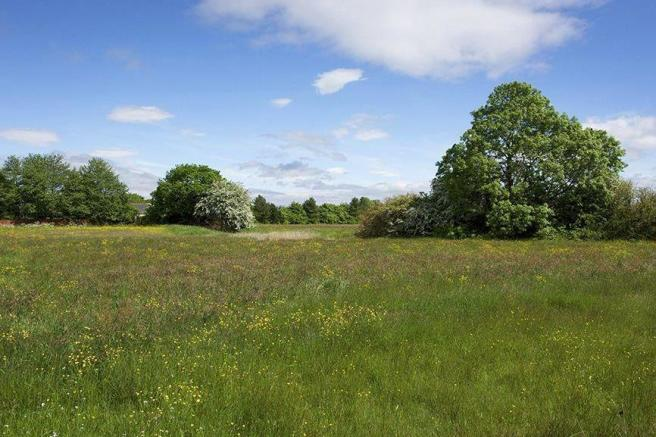 Cottam Meadow open space