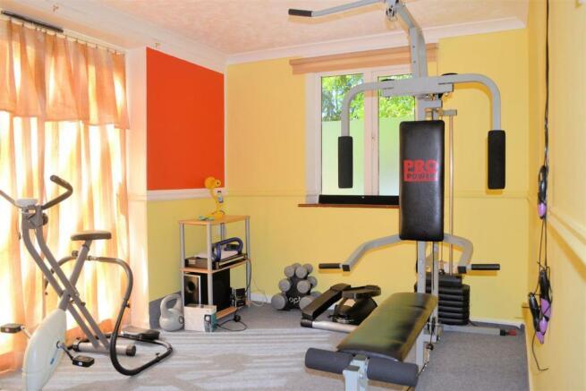 gym study