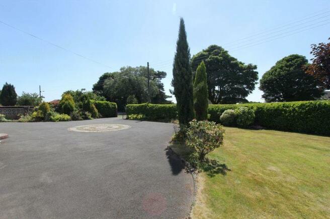 front garden p