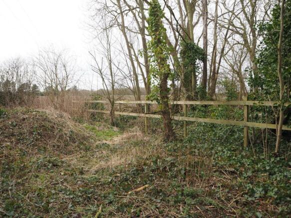 Further Garden / Comapct Woodland 873