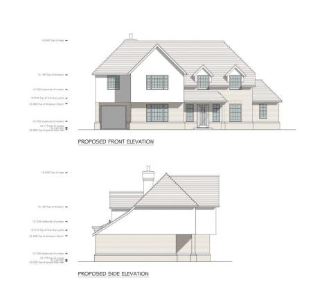 Front aspect (...