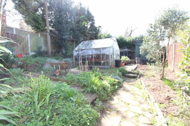 48 Austcliffe Road veg plot.JPG