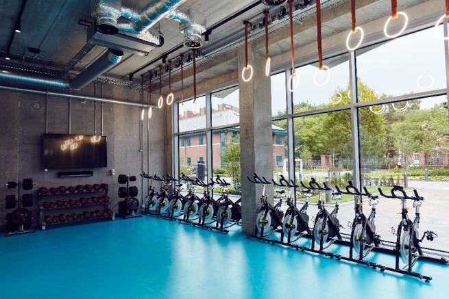 Studio Gym