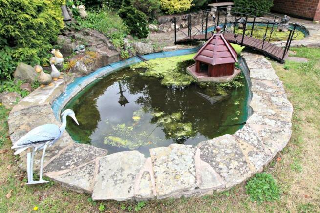 Pond in rear garden.
