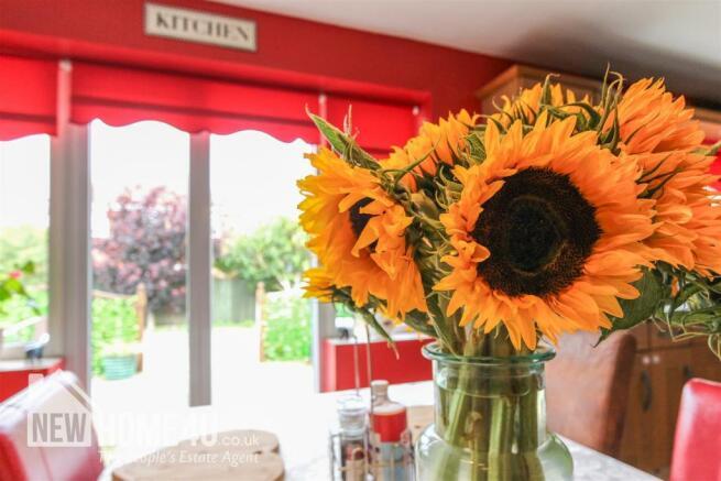 KITCHEN/ DINING: