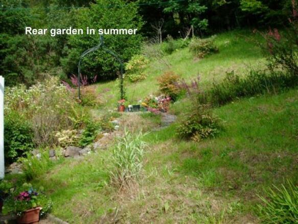 Rear Garden Taken In Summer