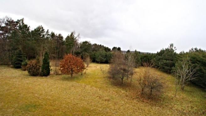 View of Property at Back