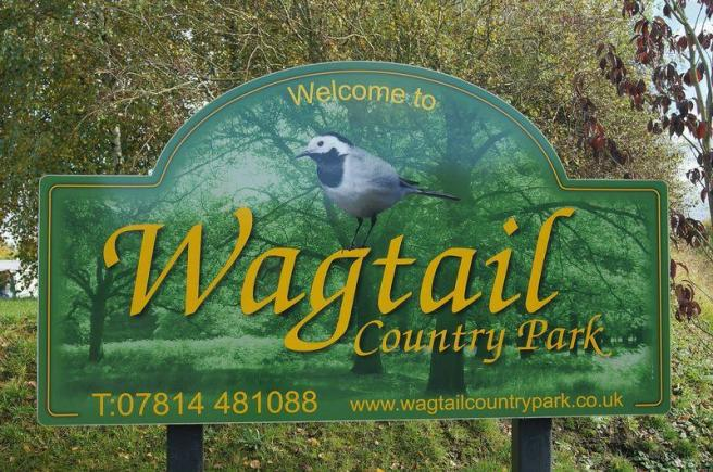 Wagtail Countr...