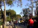 Selva center