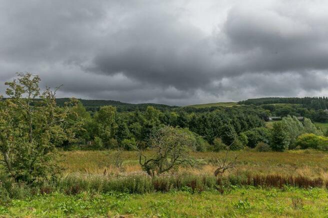 Rural Views B