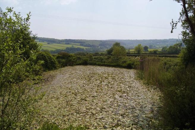 SMALL STOCKED LAK...