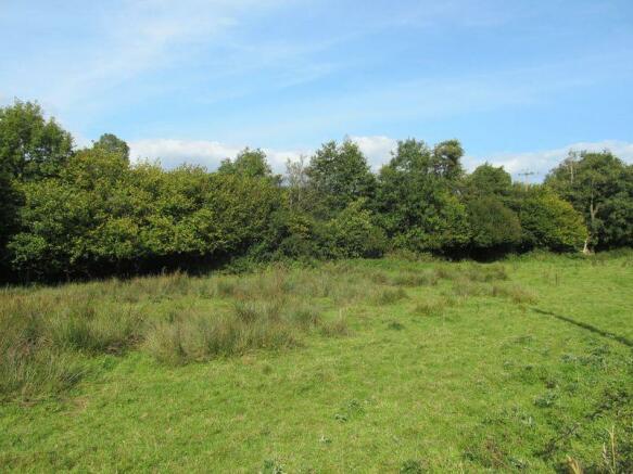 Lot 4 Meadow