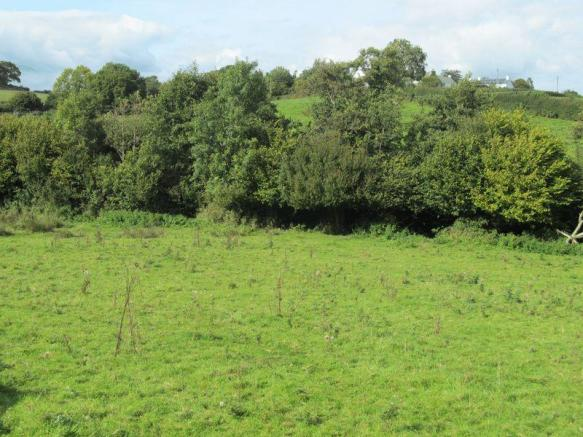 Lot 4 - Meadow