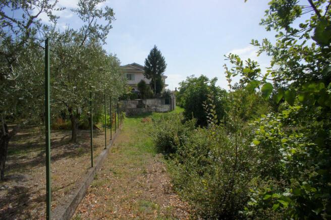 26 Side of garden