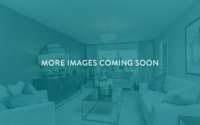 more-images-coming-soon
