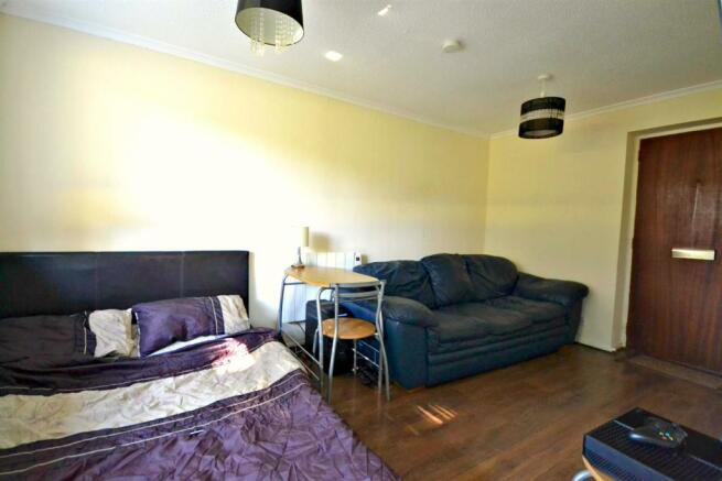 OPEN PLAN LIVING ROOM & BEDROOM