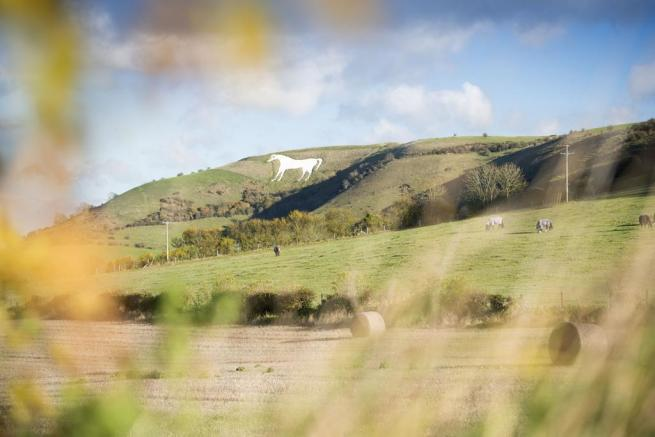 The famous White Horse