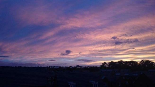 """""""Evening Sky"""" From L"""