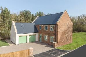 Photo of Oystercatcher, Whitefield Farm, Morpeth, NE61
