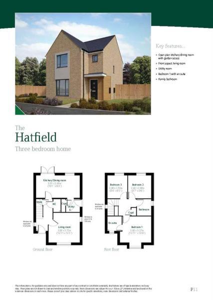Hatfield ff.jpg