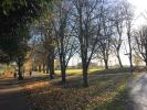 Little Bowden Park