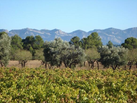 Land for sale in Arens De Lledó, Teruel, Aragon, Spain
