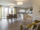 Spacious kitchen/dining/family room