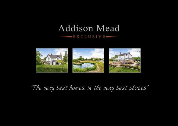 Addison Mead