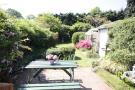Rear Garden (2)