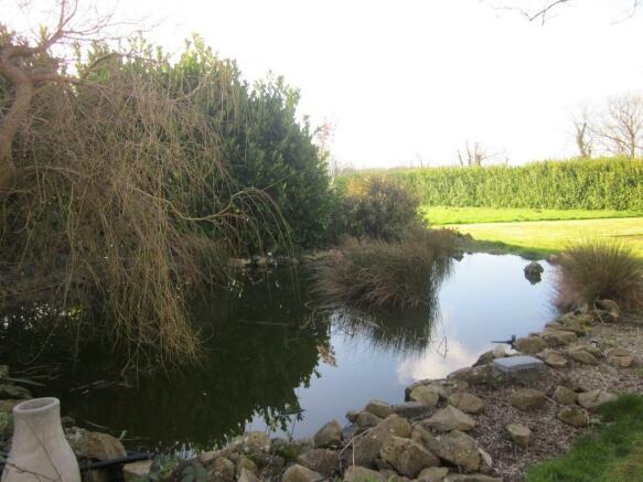 Rear Garden Pond