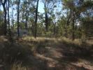 Farm Land in Queensland, Wattle Camp