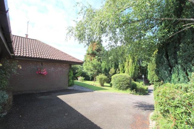 Driveway And Garden