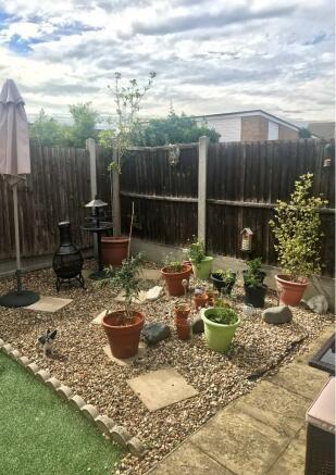 Garden Summer 19