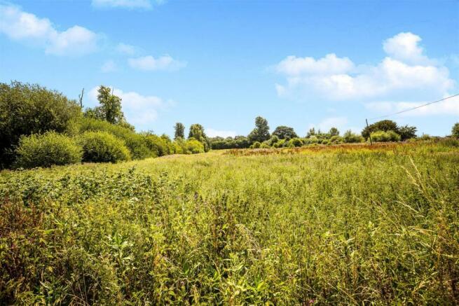 Adjacent Countryside.jpg