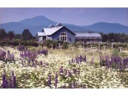 Photo of Rutland, Rutland County, Vermont