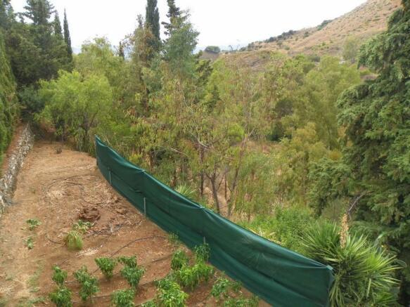 view of plot