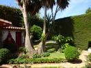 Jardín (1).JPG