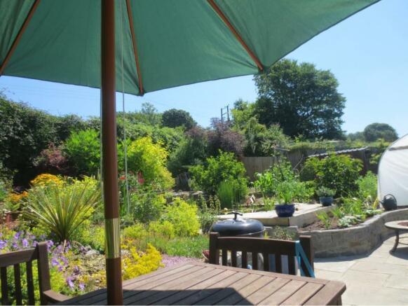 Garden in Summer (3)