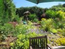 Garden in Summer (4)