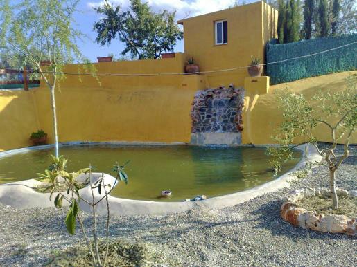 F2657462 - Pond