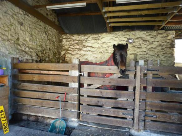 LOOSE BOXES & TACK ROOM AREA