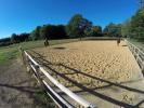 Sand school/Arena