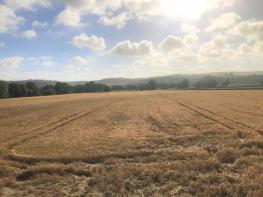 Photo of 247 Acres Land at Llandowlais Farm, Usk, NP15 1NN.