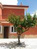 Lemon tree front 2
