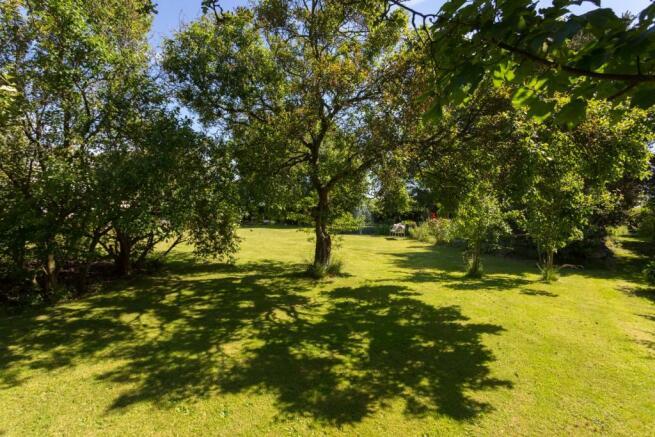 Rear Garden (C)