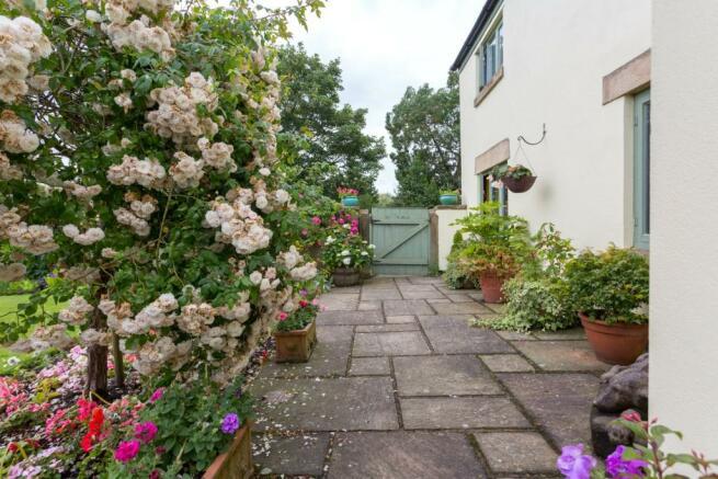 Front Garden (C)
