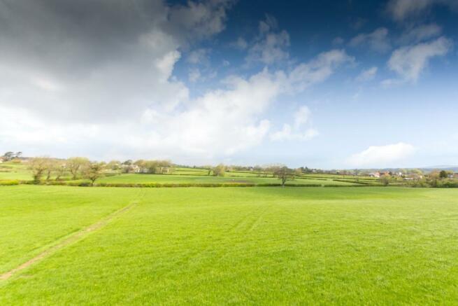 Countryside Views